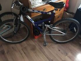 Raleigh Dorado mountain bike