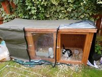 rabbit comes with hutch, indoor cage and winter thermal cover. Also food accessories