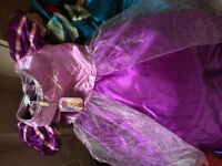Many girls party dresses and Disney dress ups