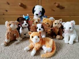 TY Beanie Babies - Dogs & Cats Collection