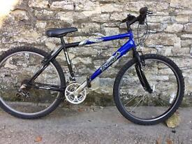 SERVICED TRIUMPH BIKE - FREE DELIVERY TO OXFORD!