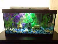 Tetra Starter Line Led aquarium