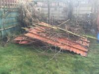FREE Waste wood / firewood