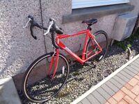 Diamondback DBR Sprint 21 Inch Bike by Raleigh