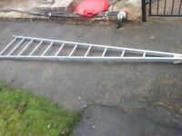 Ramsay Single A-Frames Window cleaning ladders 10Ft