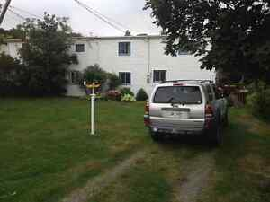 9 Sulliva's Loup-Pouch Cove - Spacious Home for you and your Cat