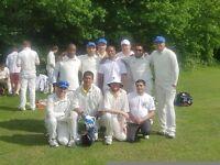 Social Saturday cricket near Wimbledon / Raynes Park