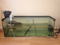 Terrapin for sale with tank and all equipment £100