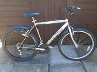 mens magna bike, new d-lock available. ready to ride can deliver
