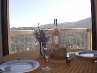 Apartment in South of France still available for 1st 2 weeks of school holidays special offer