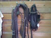 Horse Estate. Tack, Buggies and Harness and more