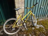 Bike suitable lady or teenager