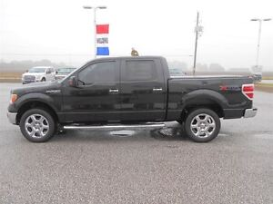 2014 Ford F-150 XTR SuperCrew 4x4 5.0L V8 Windsor Region Ontario image 9