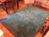 Large Shaggy Teal Blue/Green Rug