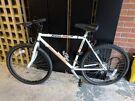 Falcon Arctic Fox Mountain Bicycle