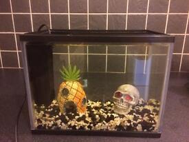 15ltr Fish Tank Set