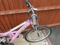 Ladies Girls Mountain Bike 15 Speed, Needs Attention,24 inch frame