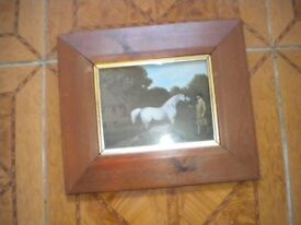 A STUBBS PRINT OF A WHITE HORSE IN A VERY NICE FRAME