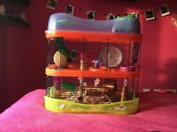 Friendly hamster & cage for sale