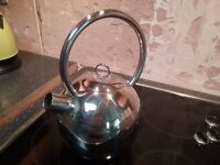 Stainless steel contemporary kettle
