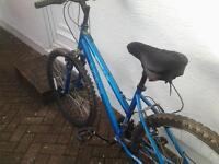 Apollo XC26 17 inches Mountain Bike