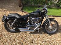Harley Davidson Sportster XL 1200 Low