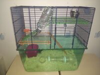 2 Baby Gerbils + Large Cage + Accessories