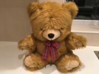 Teddy Bear - soft and cuddly, looking for a new home!!