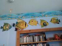 Assorted Fish Wall Art
