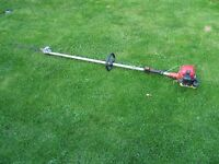 Shanks long reach petrol hedge cutter