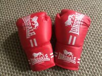 Brand new Boxing gloves M size