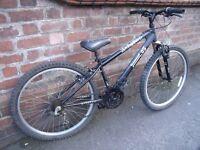 Unisex X Rated Mountain Bike