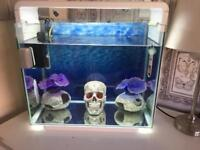 Fish tank for sale including heater, filter, led light