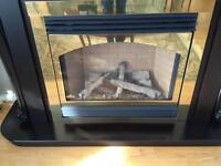 Propane Fire Place Insert