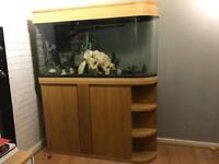 Aquarium- fish tank 374L