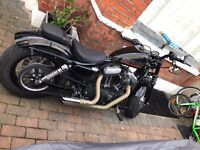HARLEY DAVIDSON sportster 1200cc XL 1200 48-2014- 8000 MILES ONE OWNER
