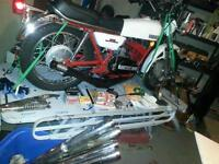 rd 250 woth lots invested and kawi ltd 250