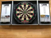 Dart board with 12 darts