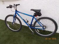 """Trek 17"""" Hand-Built Mountain Bike - £150, collection from the Forest of Dean, Gloucestershire."""