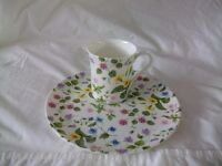 Queens China Country Meadow Mug and Plate