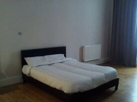 lovely ang huge room with private garden at city centre