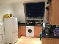 Room for rent in 2bed George Street flat