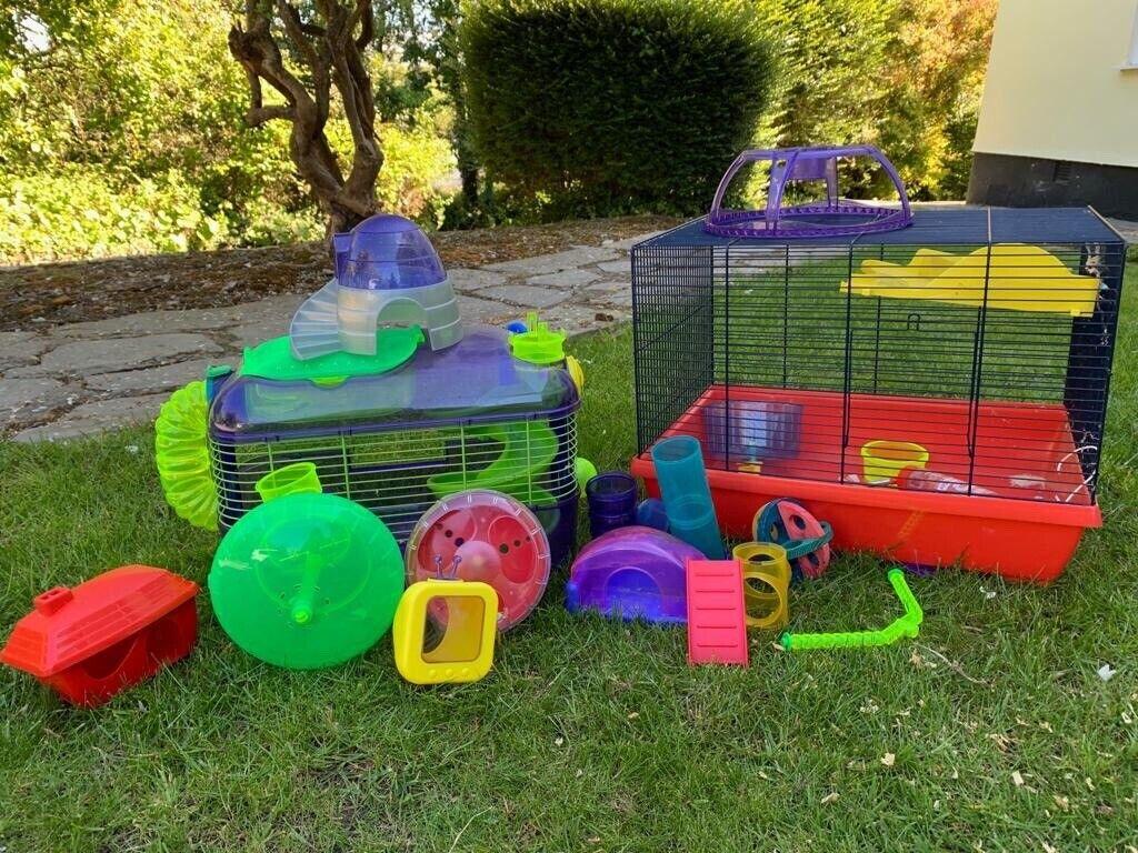 Hamster theme park | in Wadebridge, Cornwall | Gumtree