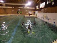 Swimming Pool Cleaning & Repair Service
