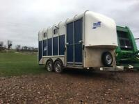 Ifor Williams 610 horsebox
