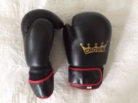 Crown Boxing gloves