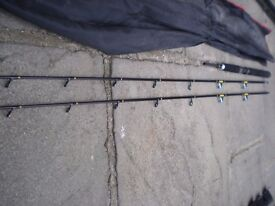 Masterline multi tip boat rod