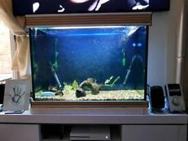 240L aquarium fish tank