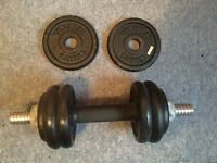 Weights - 1.25 and 0.5 kg