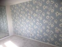 LCO Painter and Decorator